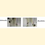 Мультипатронный картриджный фильтр AquaPro CF28-304
